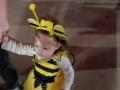 Bumble Bee Halloween